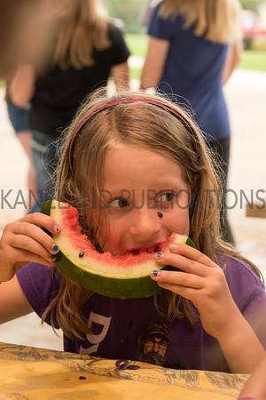 Kaneville Fest